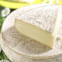 fromage-saint-nectaire-laitier