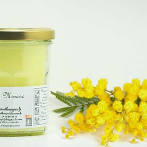 Bougies de Charroux Mimosa